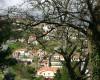 Levada Serra do Faial